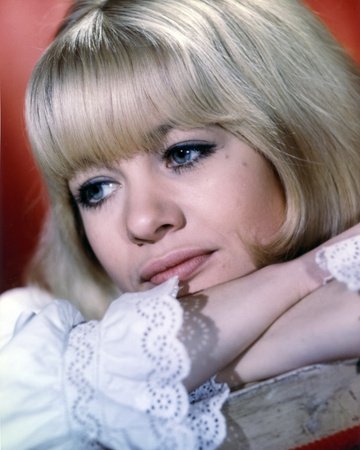 Judy Geeson Showing Her Cute Smile in a Close Up Portrait Photo by  Movie Star News