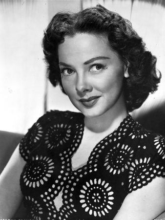 Kathryn Grayson on a Printed Top sitting Portrait Photo by  Movie Star News