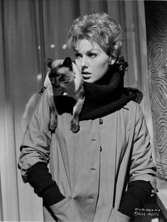 Kim Novak Posed in Formal Outfit With Cat Photo by  Movie Star News