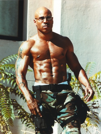 Ll Cool J posed in Portrait Photo by  Movie Star News