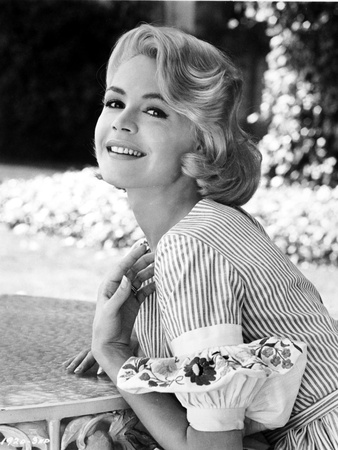 Sandra Dee wearing Classic Dress Portrait Photo by  Movie Star News