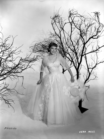 Vera Miles photographed holding an elegant designed hat, with leaveless trees, wearing a white tule Photo by  Movie Star News