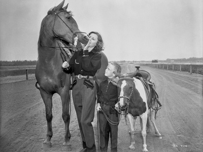 Barbara Stanwyck Bonding with Horses Classic Portrait Photo by  Movie Star News