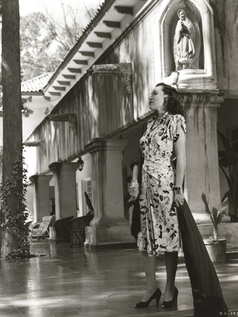 12e3a8770 Dolores Del Rio Posed wearing Printed Dress in Black and White Photo by  Movie Star News