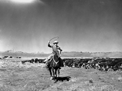 Gene Autry Riding a Horse and Spinning a Rope Photo by  Movie Star News