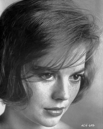 Natalie Wood Staring in Black and White Photo by  Movie Star News