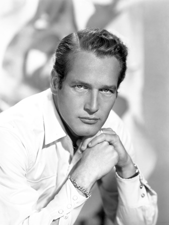 Paul Newman Portrait in Long Sleeve Polo Photo by  Movie Star News