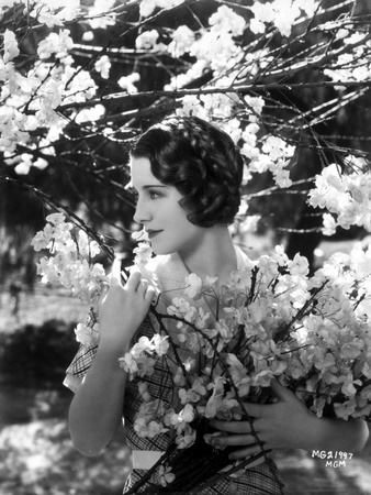 Norma Shearer Portrait in Plaid Dress Foto af  Movie Star News