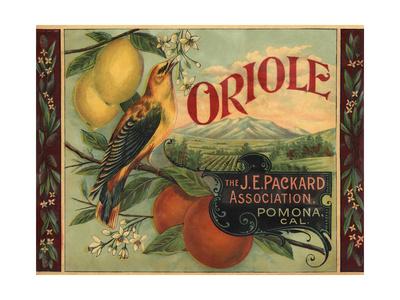 Oriole Brand - Pomona, California - Citrus Crate Label Posters by  Lantern Press