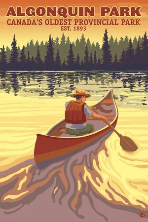 Algonquin Provincial Park - Ontario, Canada Plakat af  Lantern Press