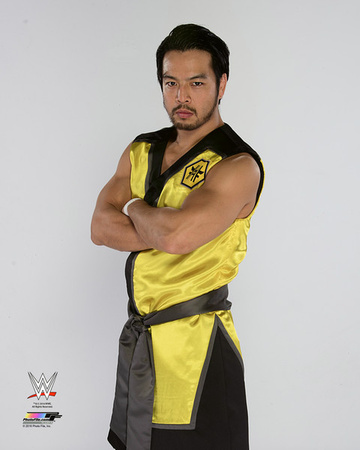 Hideo Itami 2014 Posed Photo