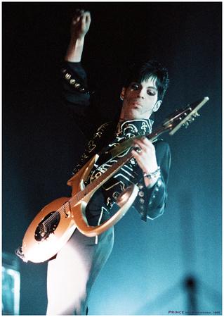 Prince- Birmingham 1995 ポスター