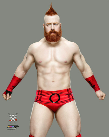Sheamus 2016 Posed Photo