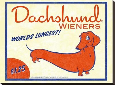 Dachshund Wieners Stretched Canvas Print by Brian Rubenacker