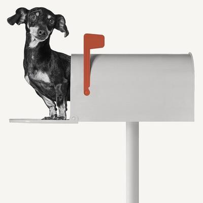 You've Got Mail Poster van Jon Bertelli