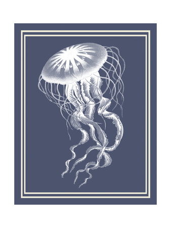 Mixed Nautical White on Indigo Blue e Art by Fab Funky