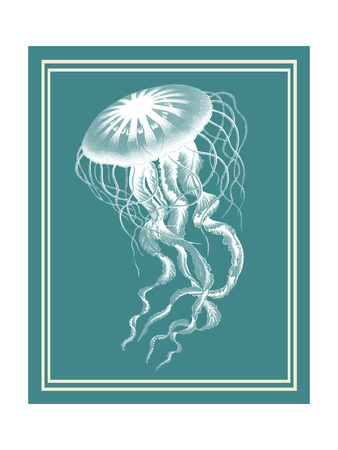 Mixed Nautical White on Teal e Art by Fab Funky
