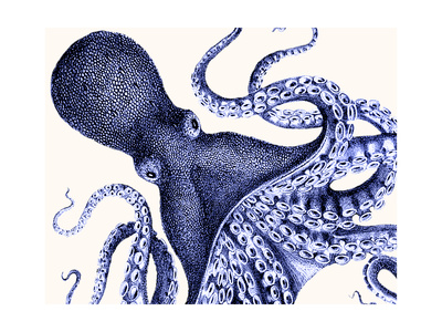 Landscape Blue Octopus Poster by Fab Funky