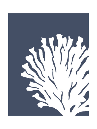 Corals White on Indigo Blue d Poster by Fab Funky