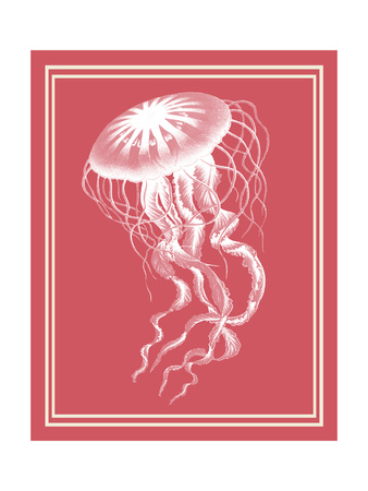Mixed Nautical White on Coral b Art by Fab Funky