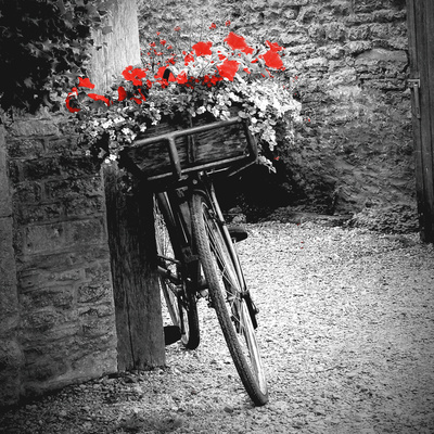 Flower Bike Square Prints by Gail Peck