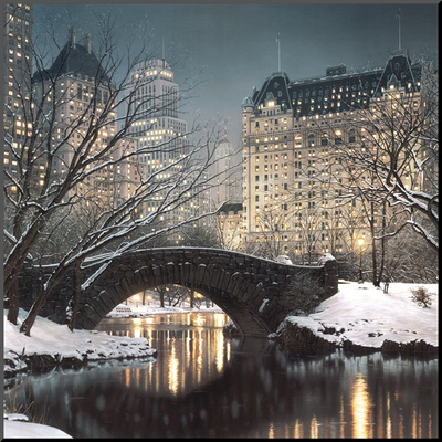 Twilight in Central Park Mounted Print by Rod Chase