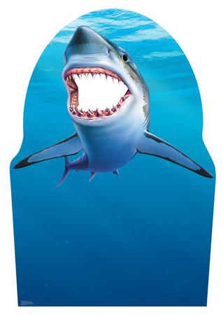 Shark Stand-In Cardboard Cutouts