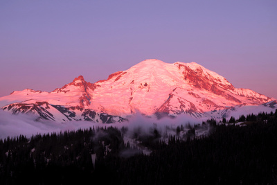 Dawn at Mount Rainier Photographic Print by Douglas Taylor