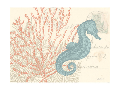 Sea Horse Posters by N. Harbick