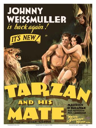 Tarzan and His Mate - Metro Goldwyn Mayer Poster by  Pacifica Island Art
