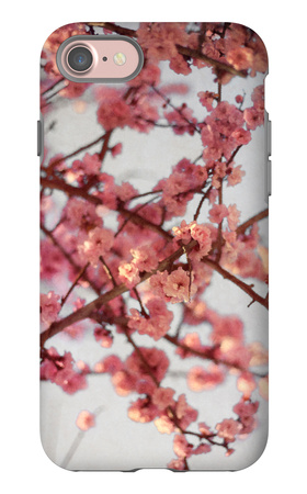 Cherry Blossoms I iPhone 7 Case by Susan Bryant