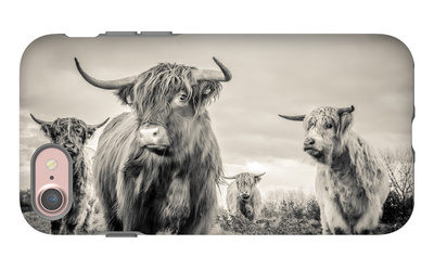 Highland Cattle iPhone 7 Case by Mark Gemmell
