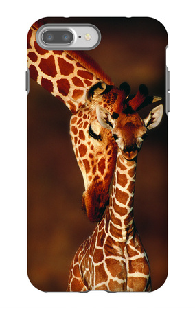 Giraffe and Baby iPhone 7 Plus Case by  Lantern Press