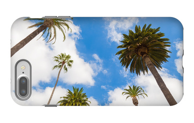 Amazing Palm Tree in Beverly Hills, California - USA iPhone 7 Plus Case by  Frazao