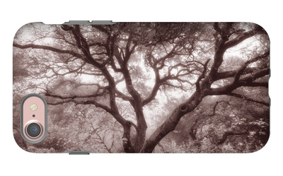 Old Oak Tree in the Oakland Hills iPhone 7 Case by Vincent James