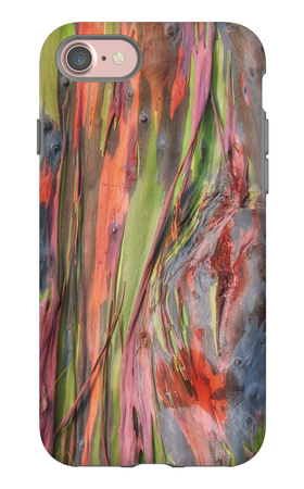 Rainbow Eucalyptus Detail, Kauai iPhone 7 Case by Vincent James