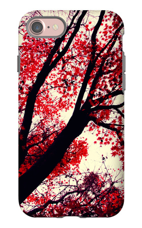 Fall Japanese Maples, Oakland iPhone 7 Case by Vincent James