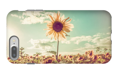 One Sunflower Rising above the Rest iPhone 7 Plus Case by  soupstock