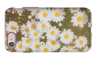 Daisies iPhone 7 Case by Jena Ardell