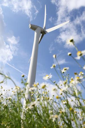 Schleswig-Holstein, Wind Turbine, Nature, Wind Power Photographic Print by Catharina Lux