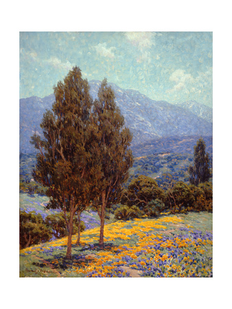 Poppies and Lupines Poster by Granville Redmond