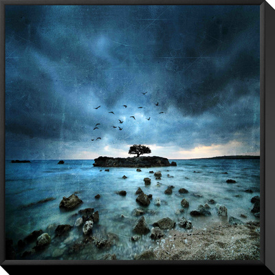 Misty Blue Framed Canvas Print by Philippe Sainte-Laudy