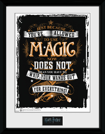 Harry Potter - Wands Out Collector-tryk
