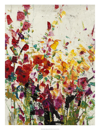 Wildflowers Blooming I Premium Giclee Print by Tim OToole
