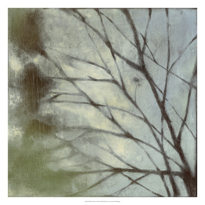 Diffuse Branches I Premium Giclee Print by Jennifer Goldberger