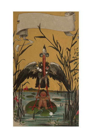 Stork with Baby Illustrations Poster