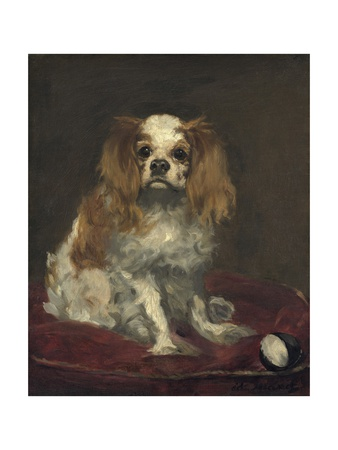 A King Charles Spaniel, 1866 Giclee Print by Edouard Manet