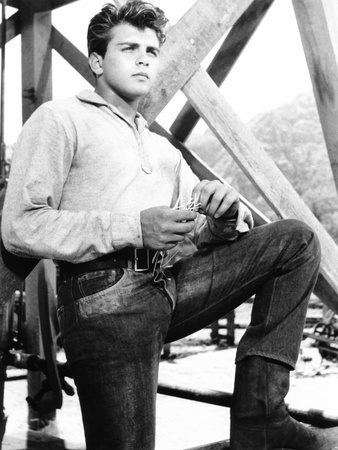 Hound-Dog Man, Fabian, 1959 Photo