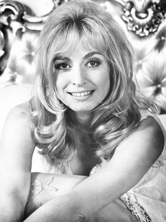 30 Is a Dangerous Age, Cynthia, Suzy Kendall, 1968 Photo
