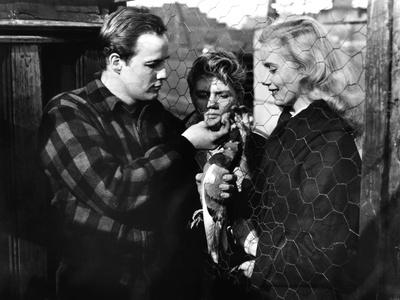 On the Waterfront, Marlon Brando, Arthur Keegan, Eva Marie Saint, 1954 Photo